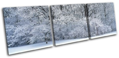 Snowy Forest Landscapes - 13-2145(00B)-TR31-LO